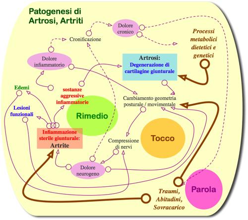 Patogenesi di Artrosi