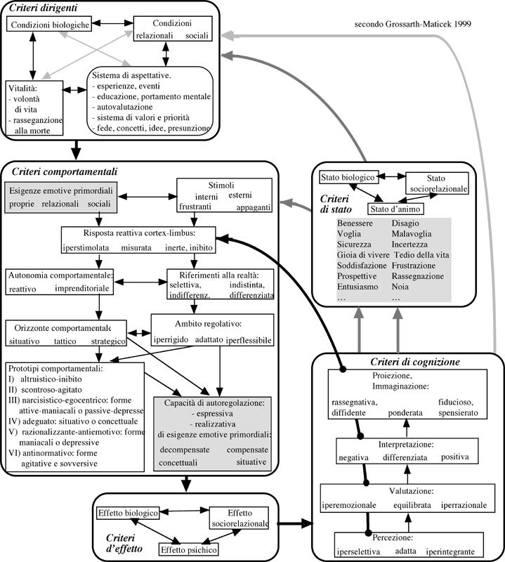 Modello comportamentale