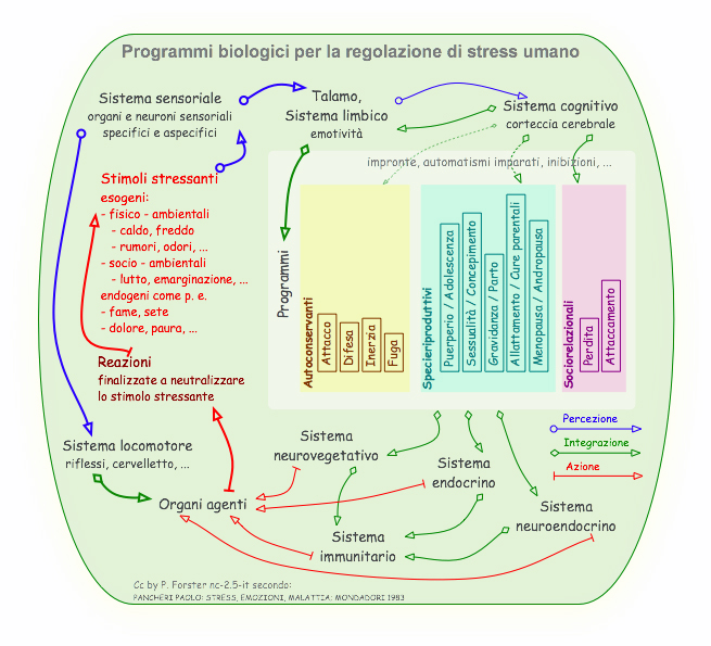 Programmi per la regolazione di stress