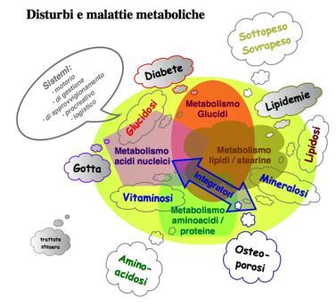 Nutriterapia Ortomolecolare Alimentazione Dieta